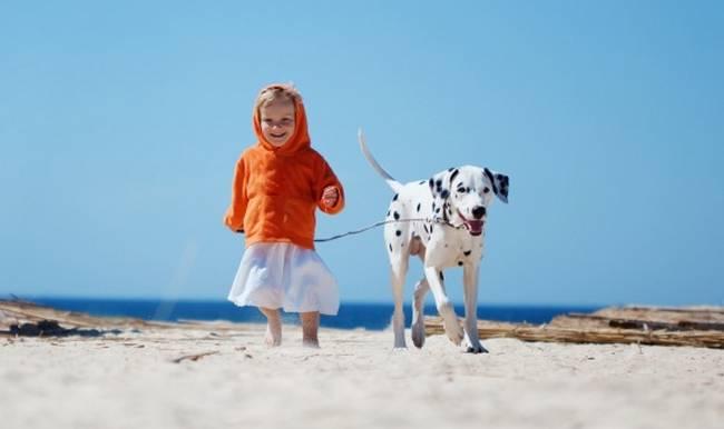 cachorro-crianca-8