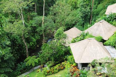 Maya Ubud Bali