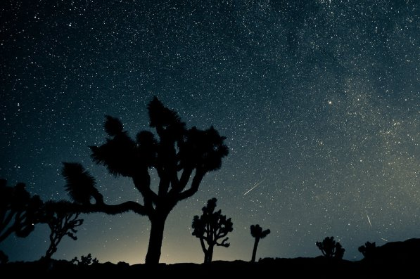 Copyright: Shutterstock/kesterhu