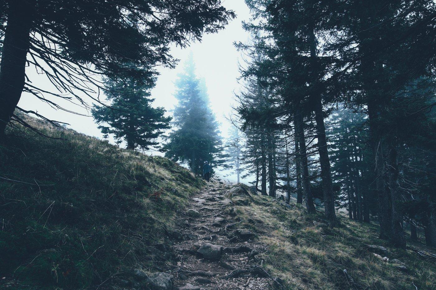 5 Dinge, die mich in Baden-Württemberg überrascht haben - uberding ...