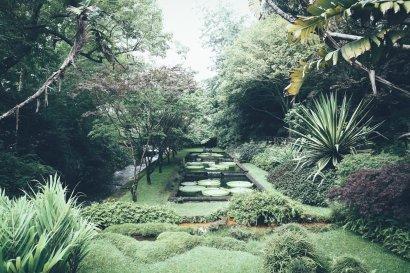 Terra Nostra Garden   Azoren