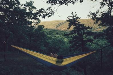 USA, Appalachian Trail, New York