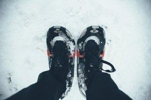 Wintersport Bucketlist Schneeschuhwandern mit Schlittenhunden
