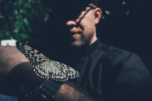 Schmetterlinge in Entopia - Handzahm