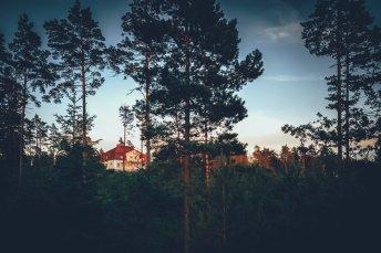 Gotland Kalksteinbruch