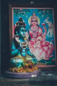 09_Sri_Lanka_0124_gefiltert
