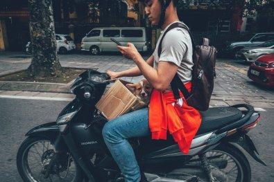 Ganz normal in Hanoi. Dog in a Box und Handy Check auf dem Roller.