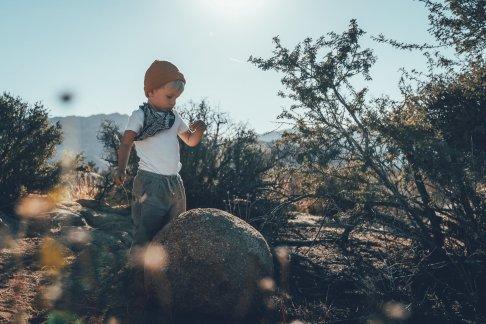 Pause im Joshua-Tree-Nationalpark
