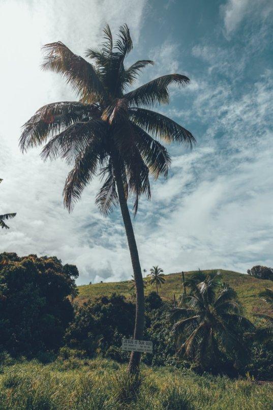 Cook Islands - Urlaub im Paradies