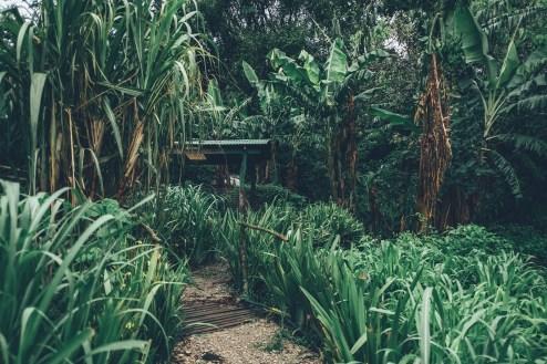 05_Costa_Rica_0059