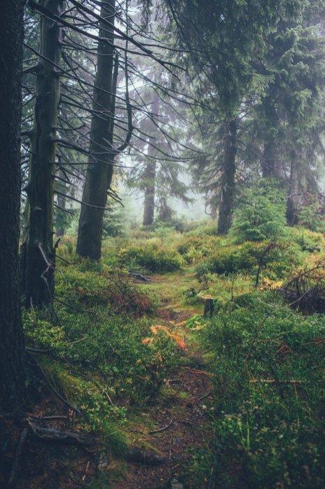 09_erzgebirge_0022
