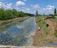 На Херсонщине авто упало в канал, погибли двое детей и взрослый