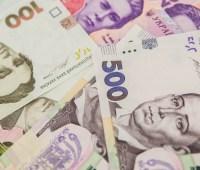 Бюджеты Житомирщины получили более 900 тысяч по результатам земельных торгов