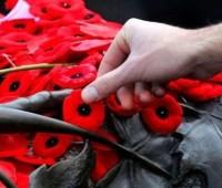 Сегодня День памяти и примирения