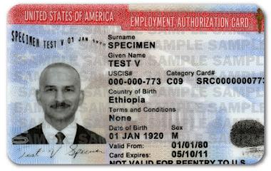 Ejemplo de autorización de empleo