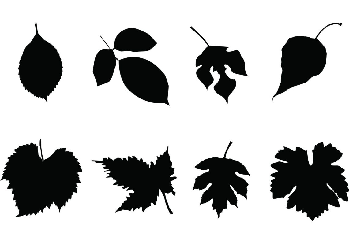 Download Free Leaf Silhouettes Vector Set - Download Free Vector ...