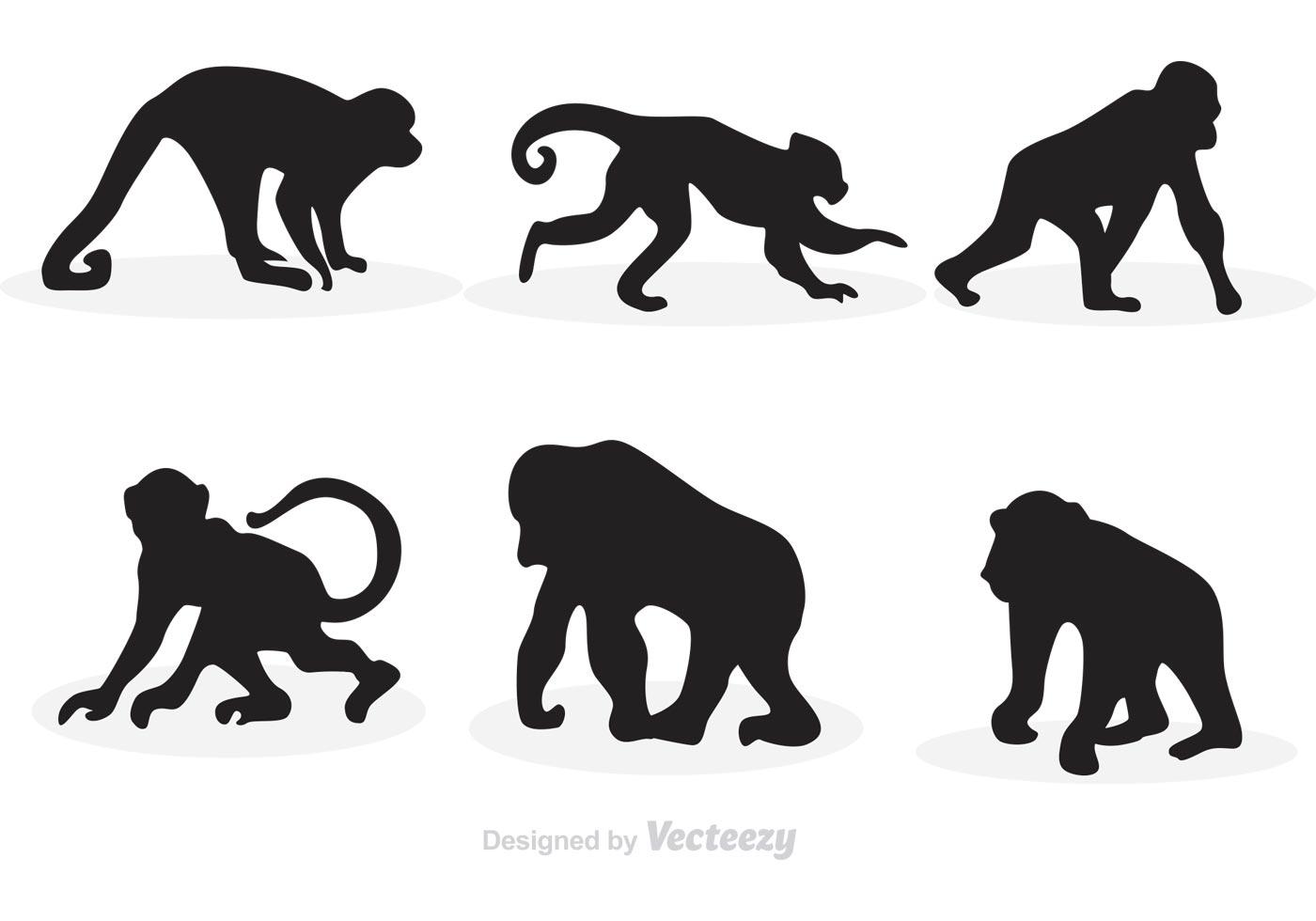 Monkey Silhouette Vectors