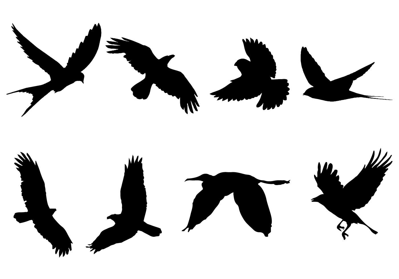 Flying Bird Silhouette Vector