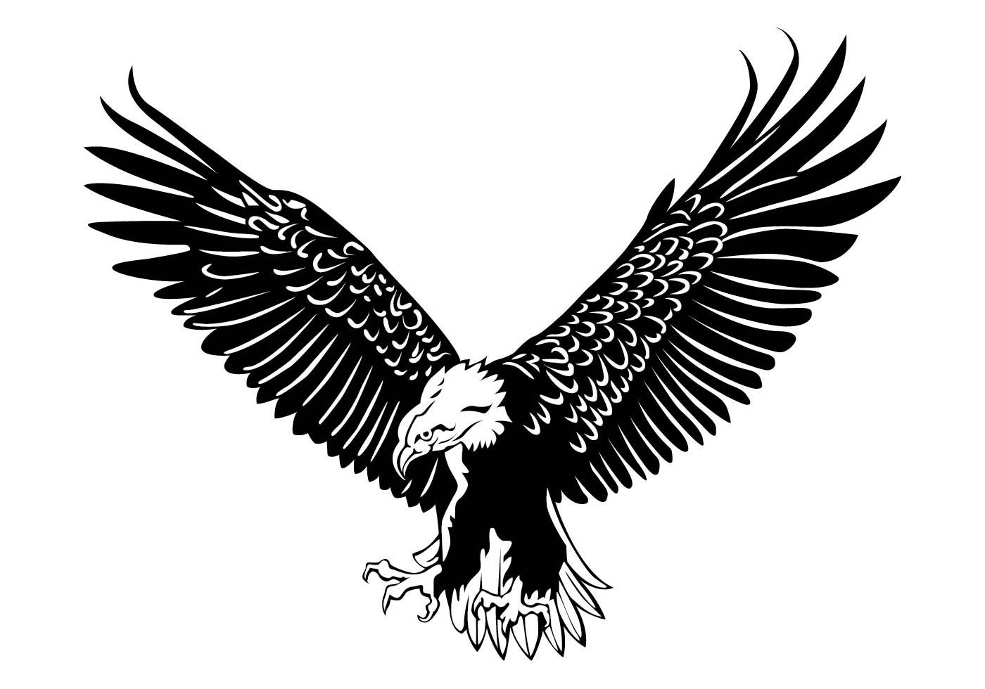 Eagle Free Vector Art