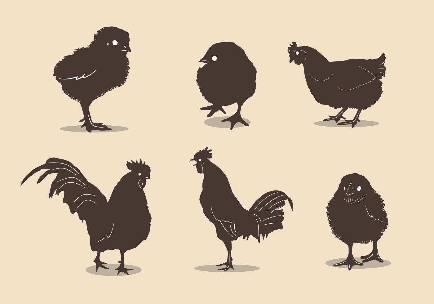 Chicken silhouette vectors - Download Free Vector Art ... (1400 x 980 Pixel)