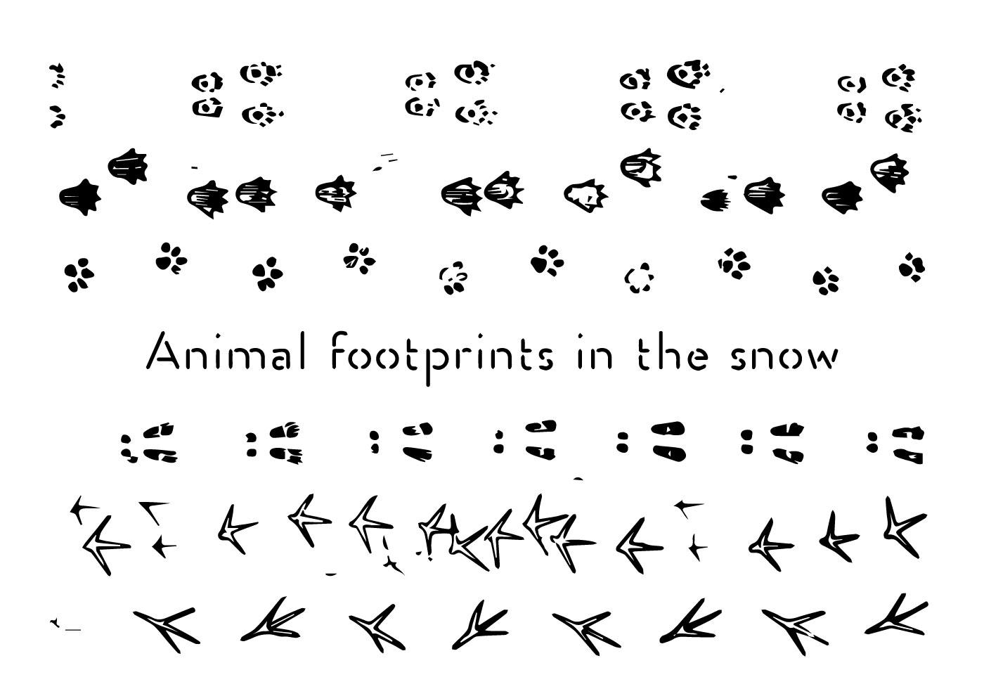 Animal Footprints Vector Background