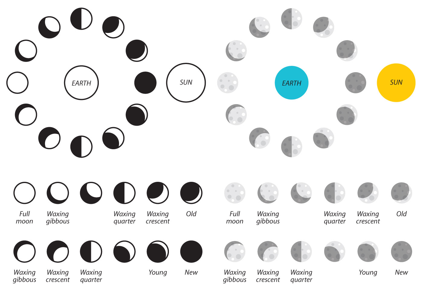 Moon Phases Vector Icons