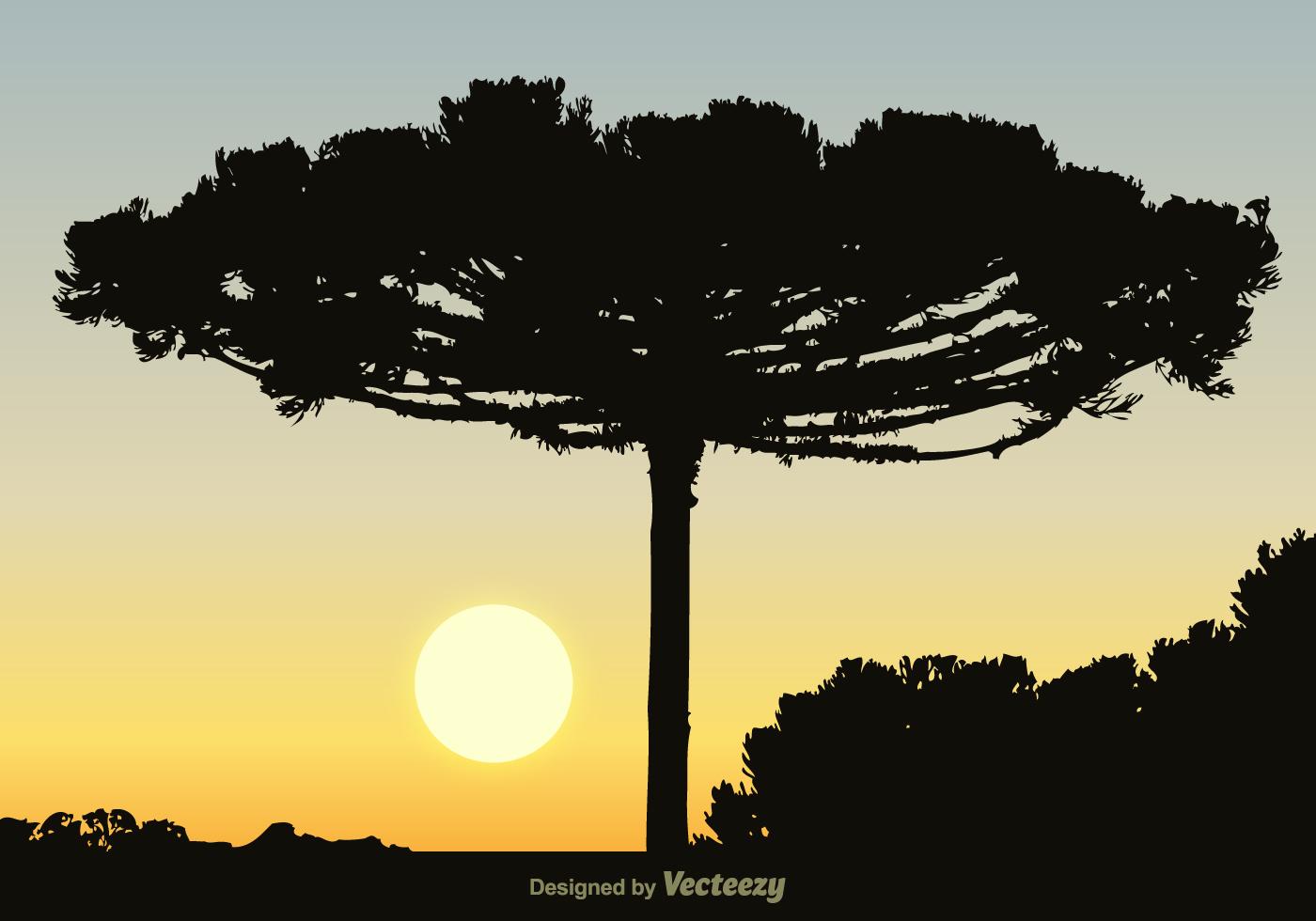 Free Black Araucaria Vector Background Download Free