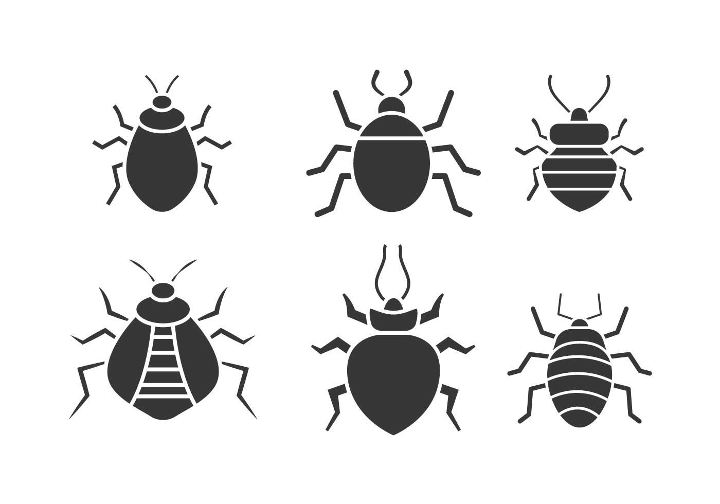 Bed Bug Vector