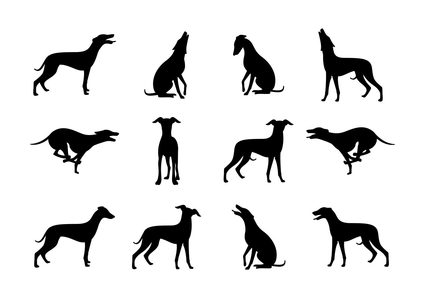 Whippet Silhouettes Vector