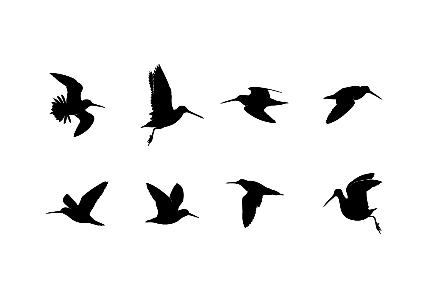 Silhouette Flying Snipe Free Vector