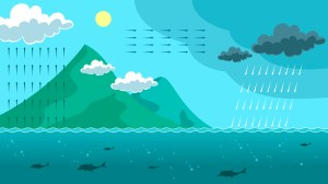 Landscape Water Cycle Infographic  Download Free Vector