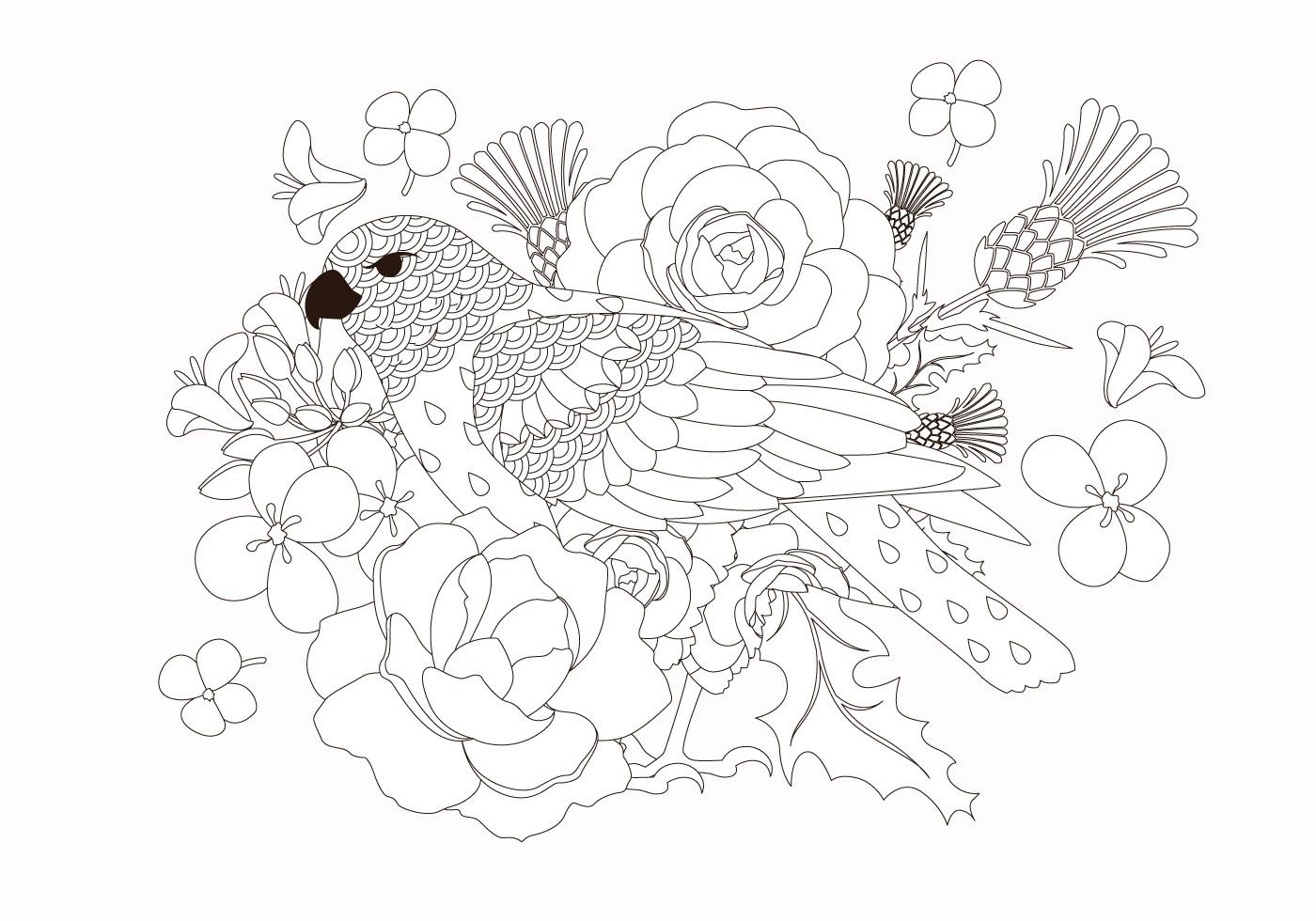 Coloring Book Bird Animal Vector