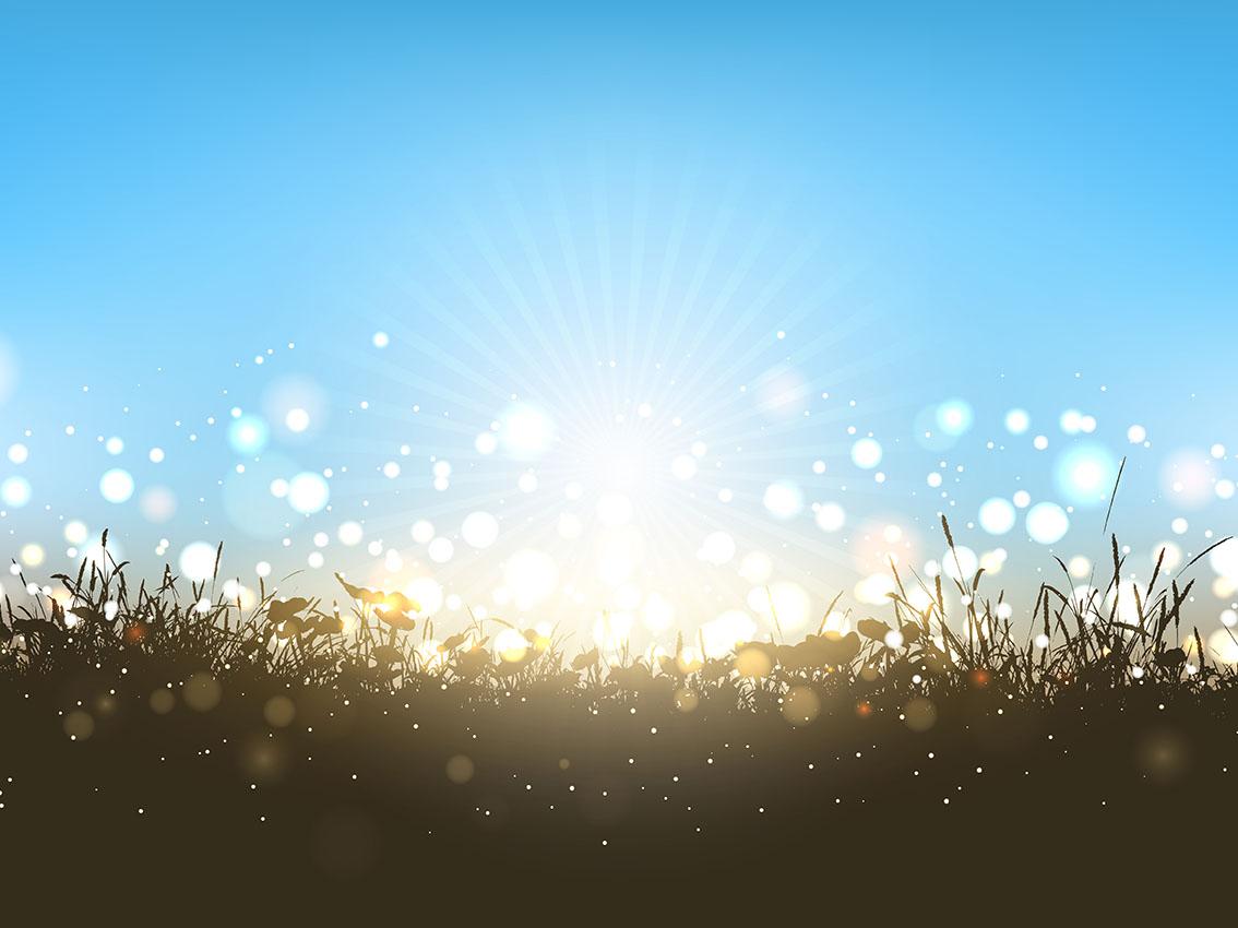 Sunny Landscape Download Free Vectors Clipart Graphics