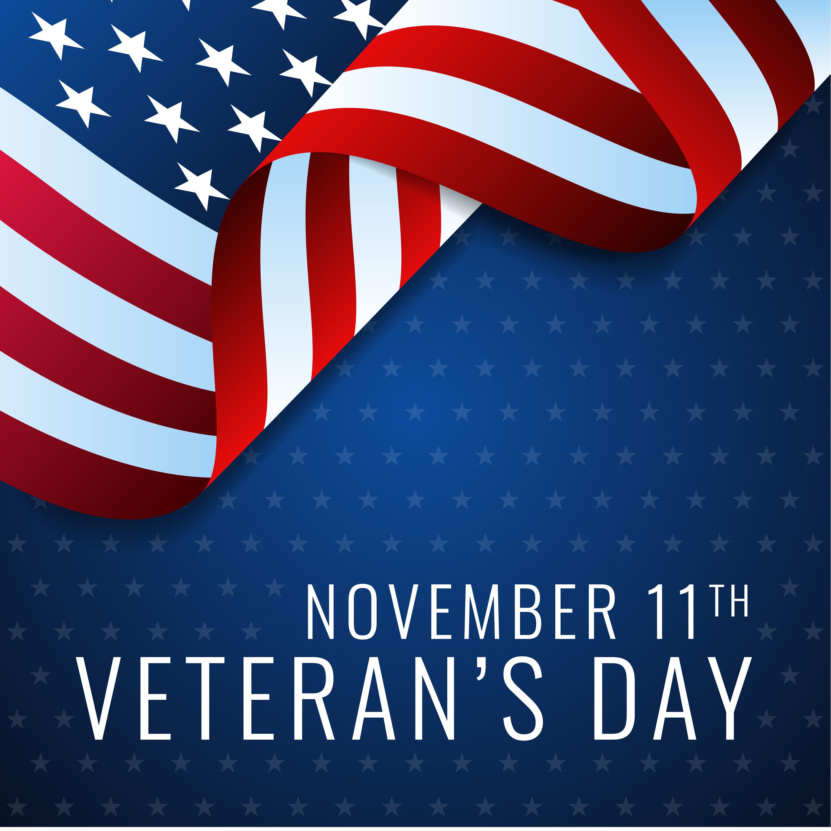 Usa Veterans Day Design Template