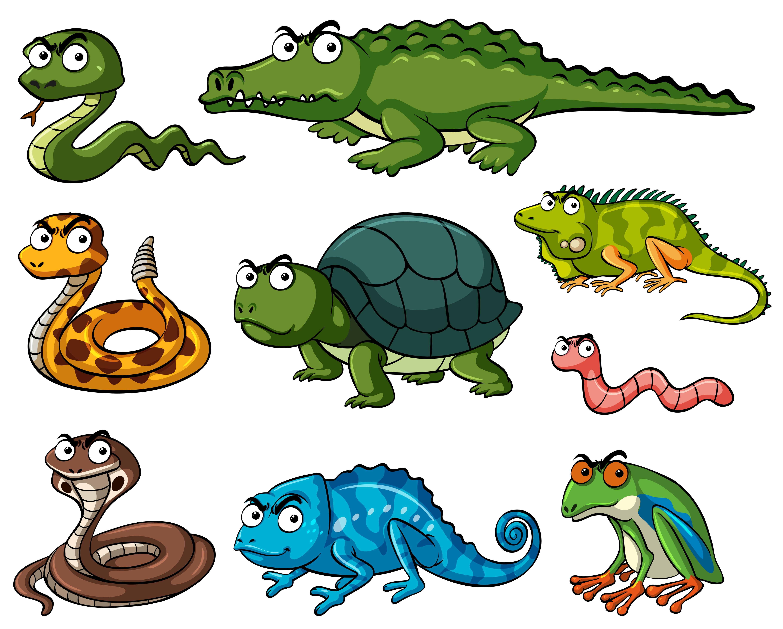 Reptile Free Vector Art