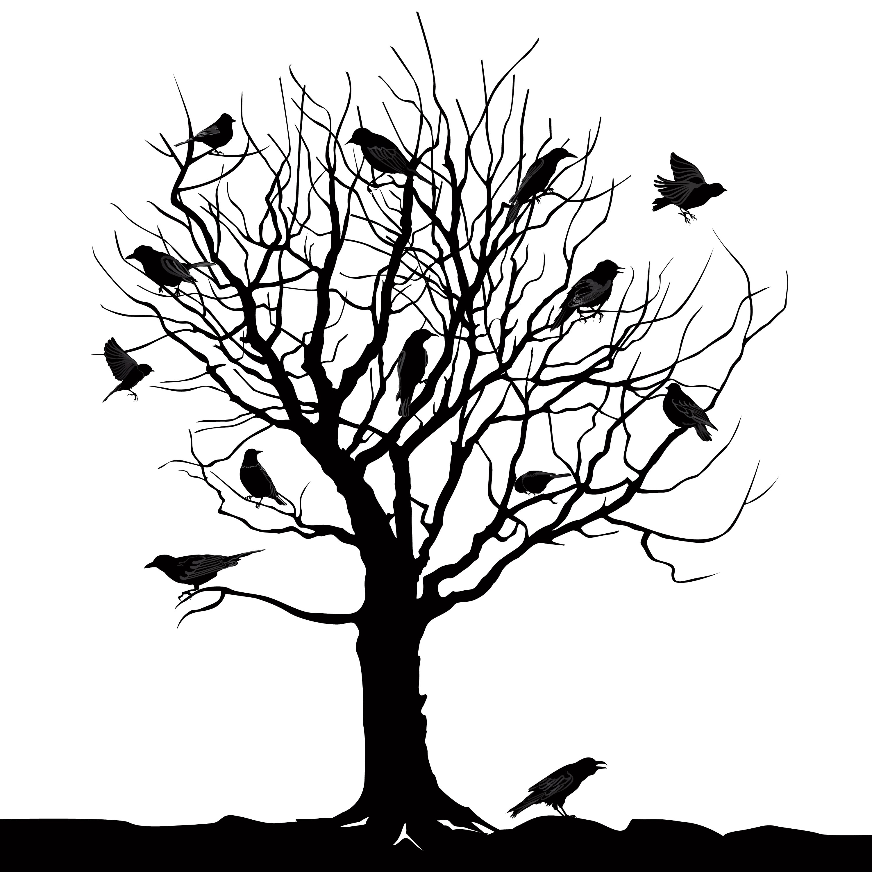 Birds Over Tree Forest Landscape Wild Nature Silhouette