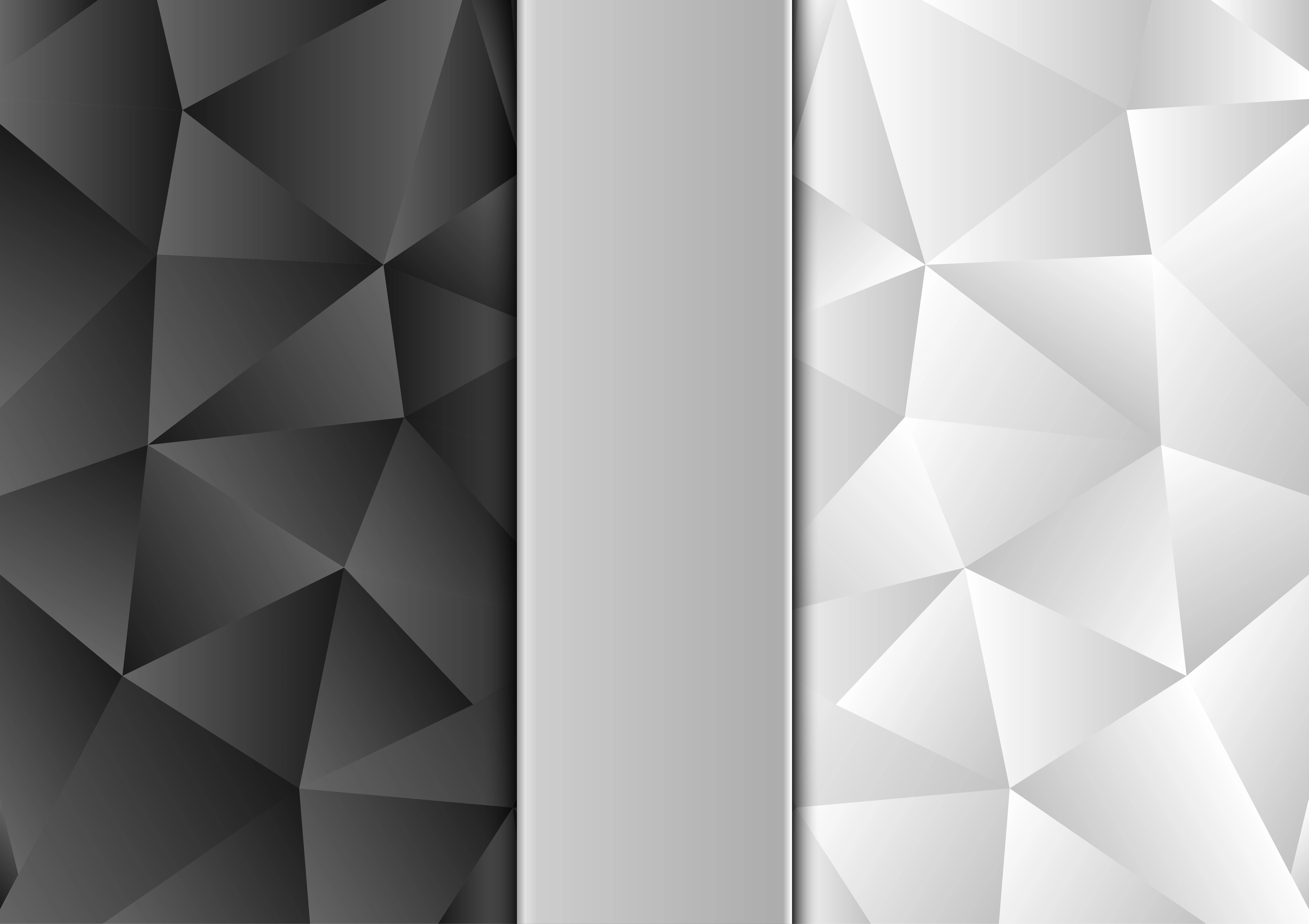 Black And White Color Polygon Abstract Background Modern