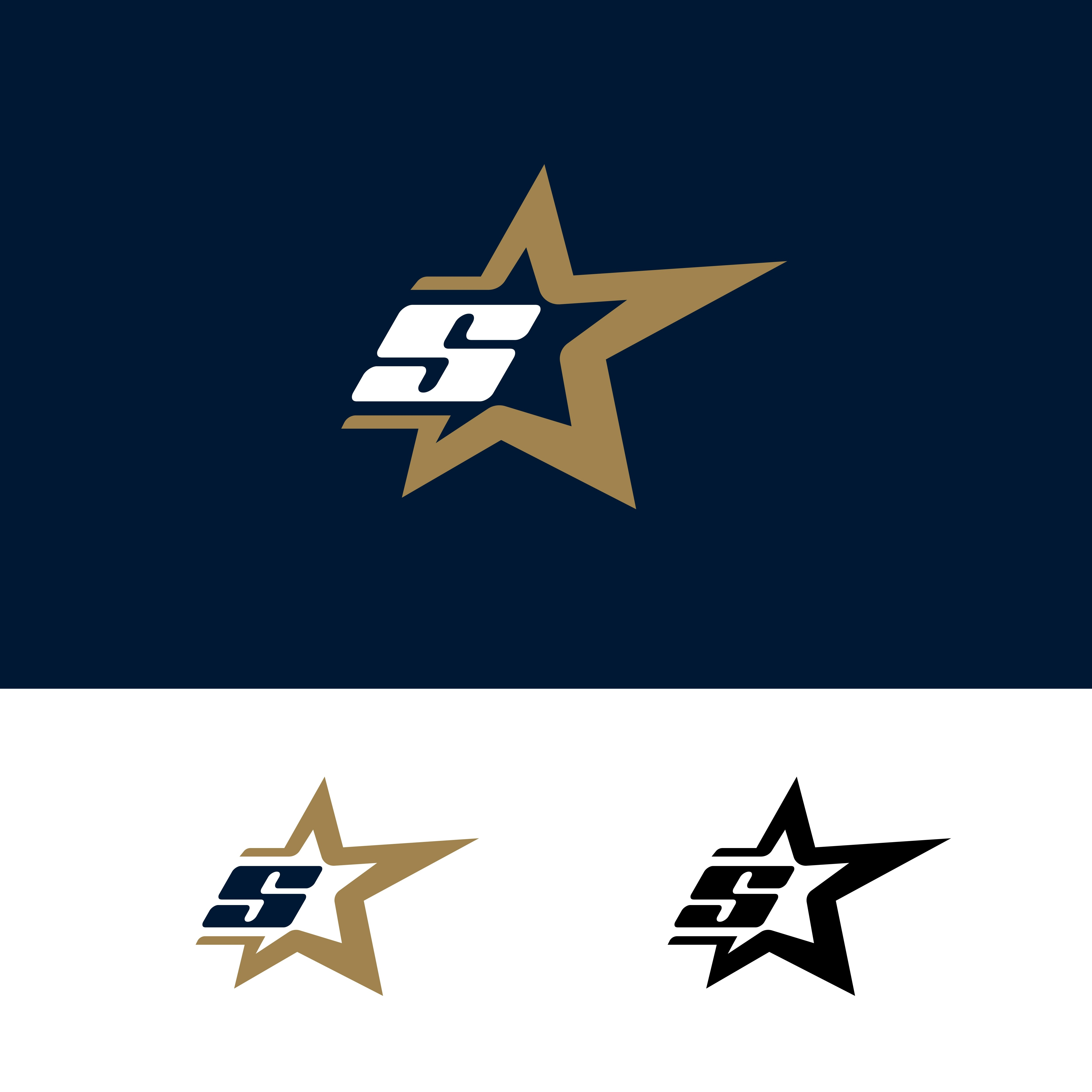 Letter S Logo Template With Star Design Element Vector