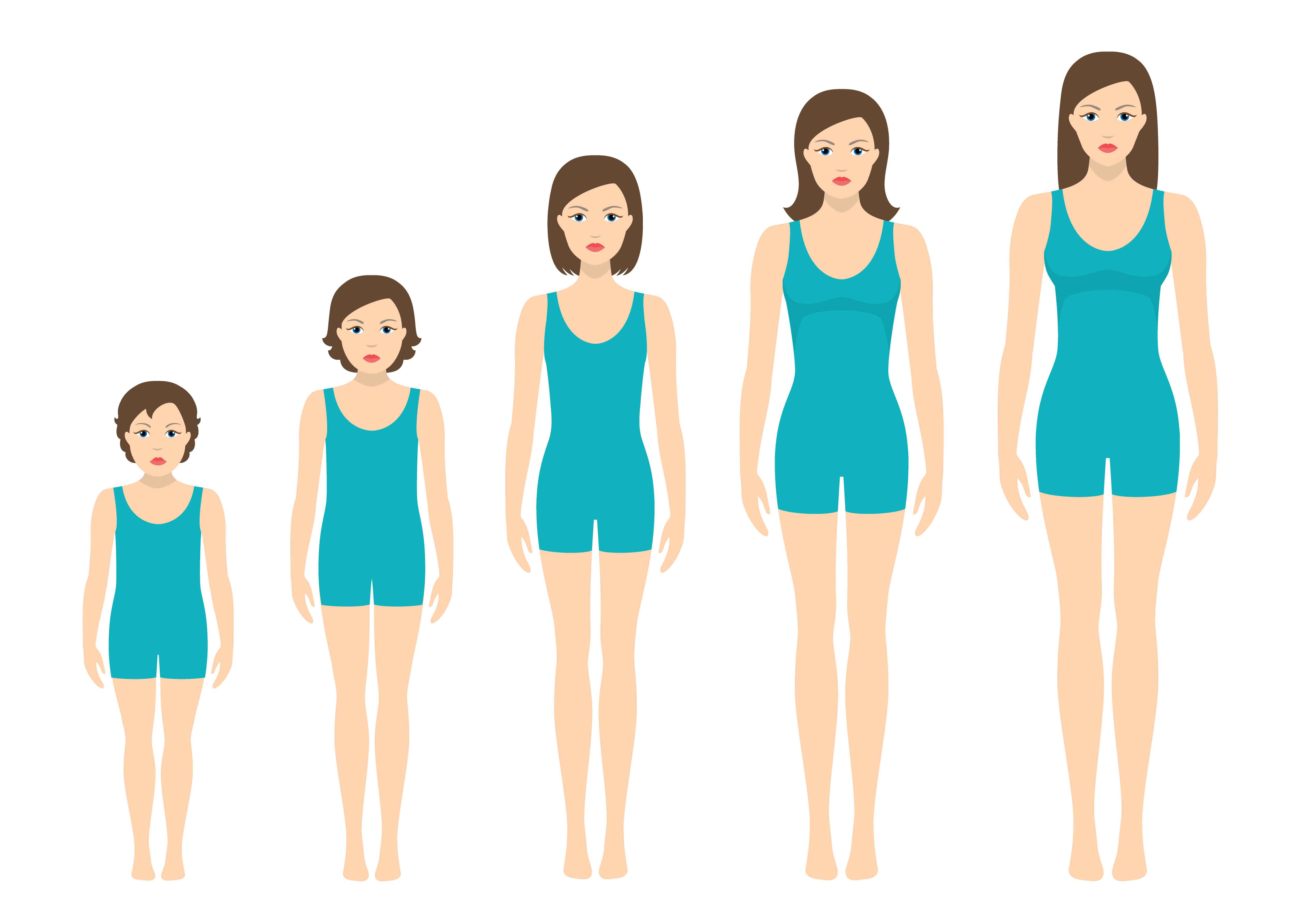 Women S Body Proportions Changing With Age Girl S Body