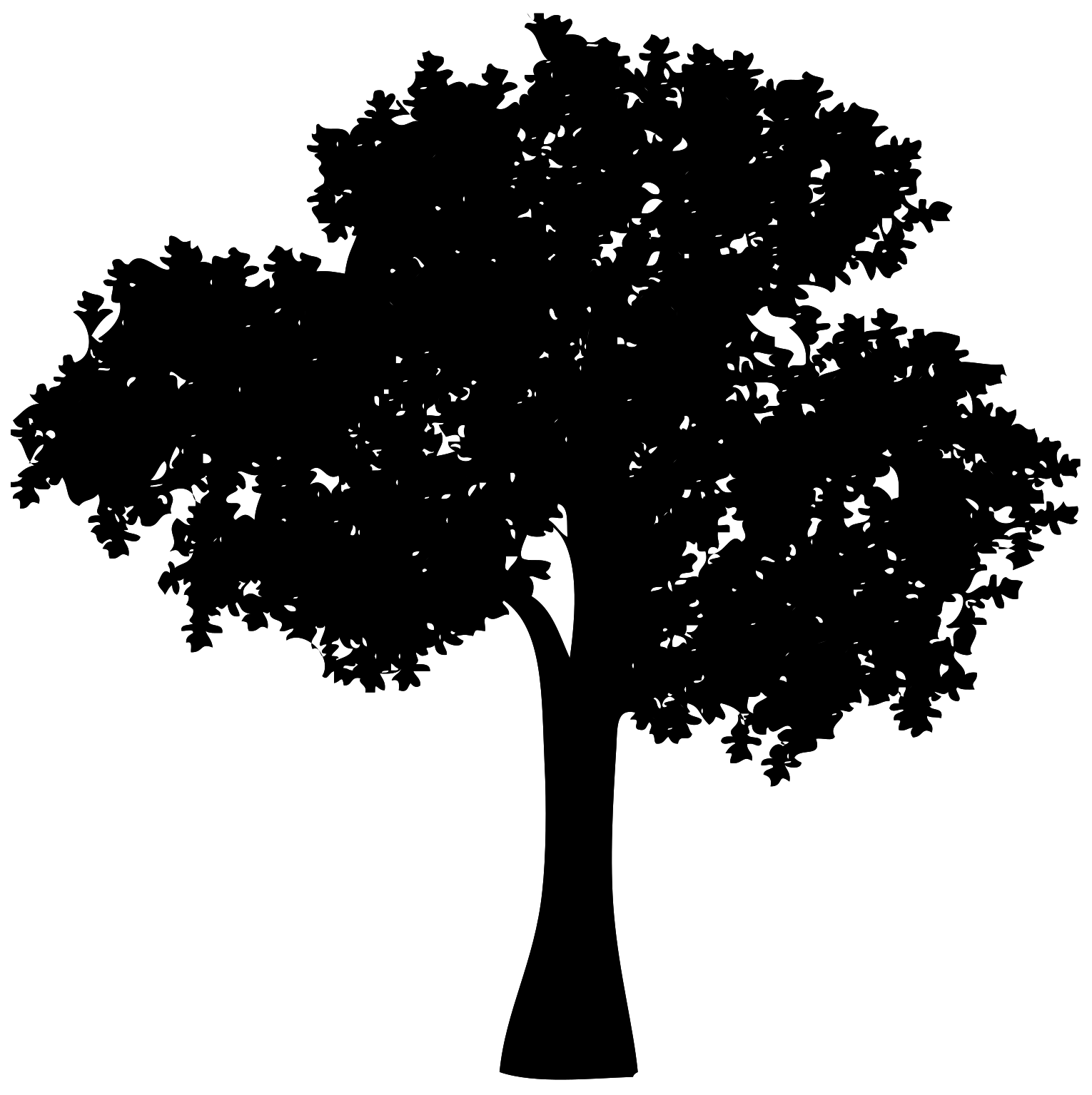 Free Dead Tree 1189369 Png With Transparent Background