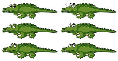 Cute Green Alligator And Yellow Duck With Speech Bubble Download Free Vectors Clipart