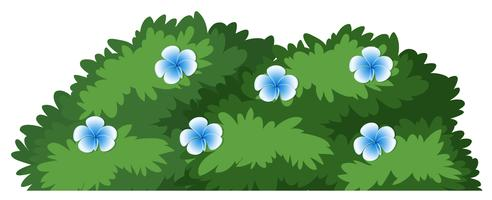 Bush Free Vector Art 56 808 Free Downloads