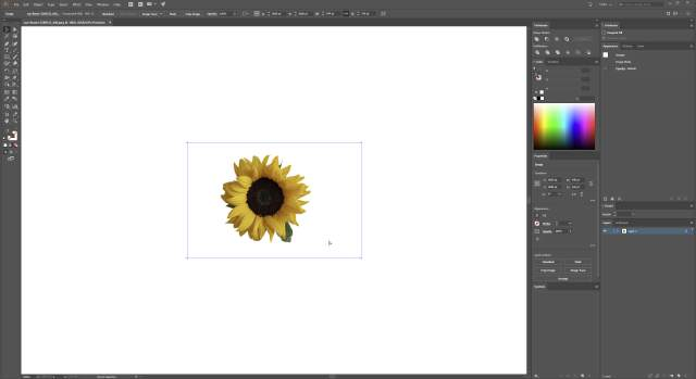 Convert JPG to Vector step 1