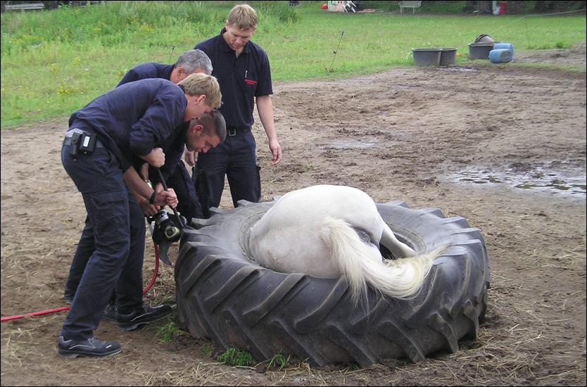 BOM FAST: Ponnien Smila måtte klippes løs da hun skled tirsdag kveld. Foto: DPA