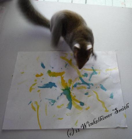 Winkelhimer un écureuil qui fait de la peinture