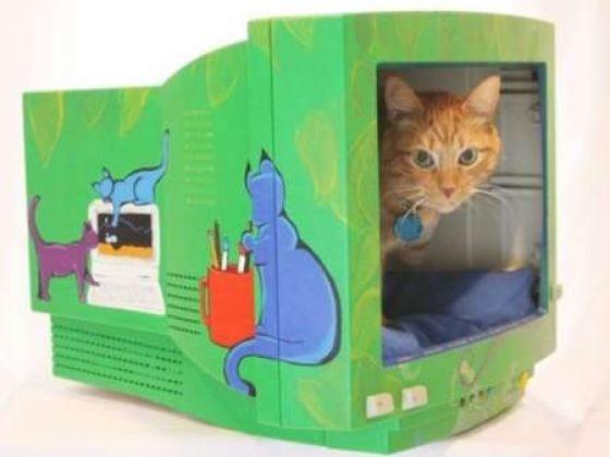 ordinateur panier pour chat