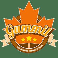 Dakgootreparatie met Gummil Premium vloeibaar rubber