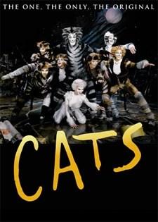 cats musical wiki fandom