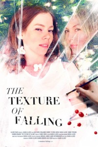 The Texture of Falling poster