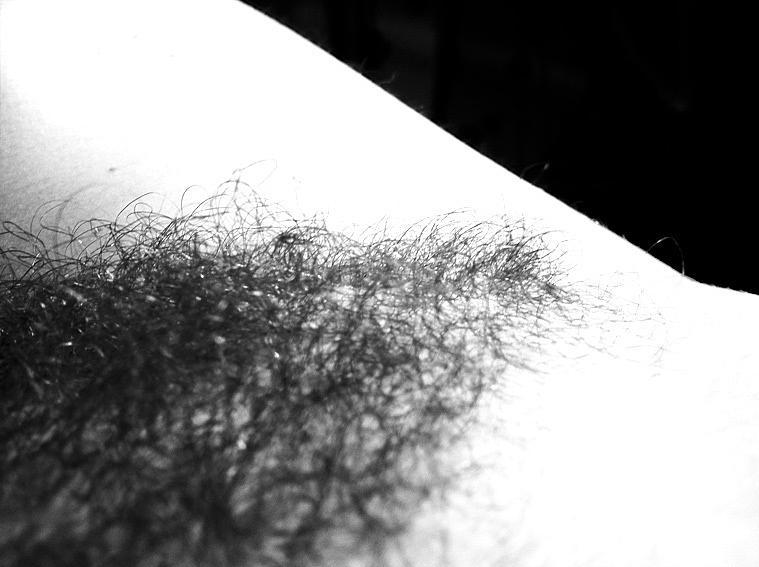 hiding in the bush L'erotismo è dare al corpo le suggestioni della mente. (Georges Perros, Papier collés, 1960)Lavoro autobiografico ©Donatella D'Angelo 2011